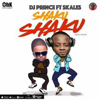 Download Audio | Skales - Shaku Shaku