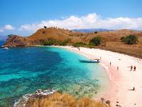 Ini dia pantai pink di lombok dan rute menuju ke lokasi