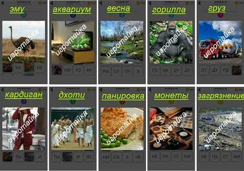 800 слов сидящая горилла в лесу ответы на 46 уровень