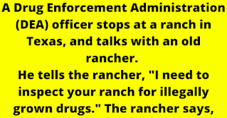 """A Drug Enforcement Administration (DEA) officer stops at a ranch in Texas, and talks with an old rancher.   .   He tells the rancher, """"I need to inspect your ranch for illegally grown drugs."""" The rancher says, """"Okay, but don't go in that field over there,"""" as he points out"""