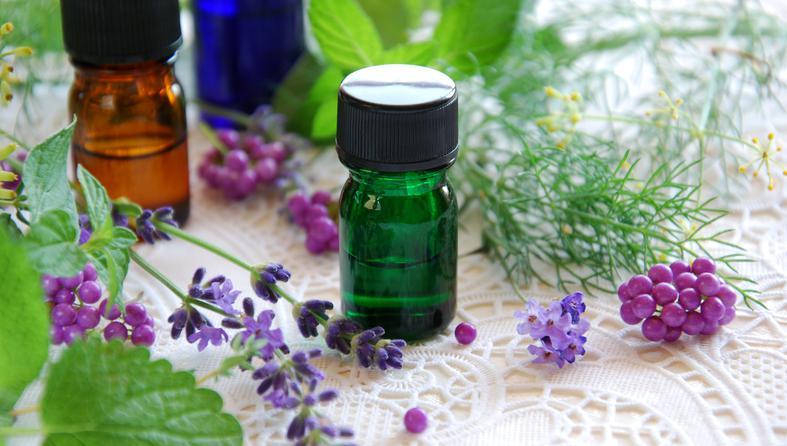 kadulja-ljekovito_bilje-lijek_iz_prirode
