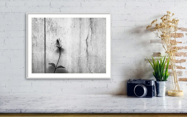 Forgotten Love Wall Art Framed Print