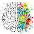 TEST: Vaata, kumb ajupookera sinu juures domineerivam on!