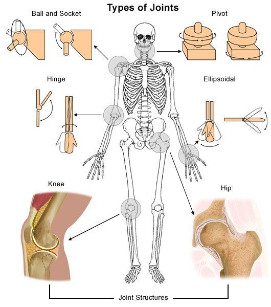 Tulang bokong sakit