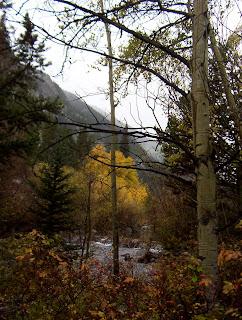 Colorado Fall Foliage Drives