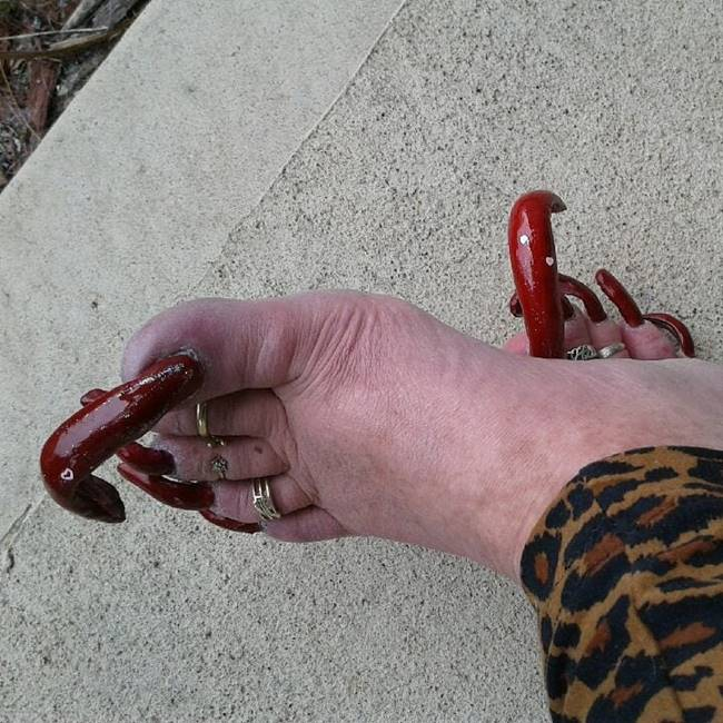 Women can't wear shoes due to her extra long toenails and made it difficult to drive car