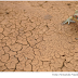 Secas na América do Sul podem aumentar até o fim do século, sugere estudo
