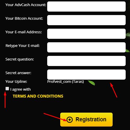 Регистрация в Eco Hive 2