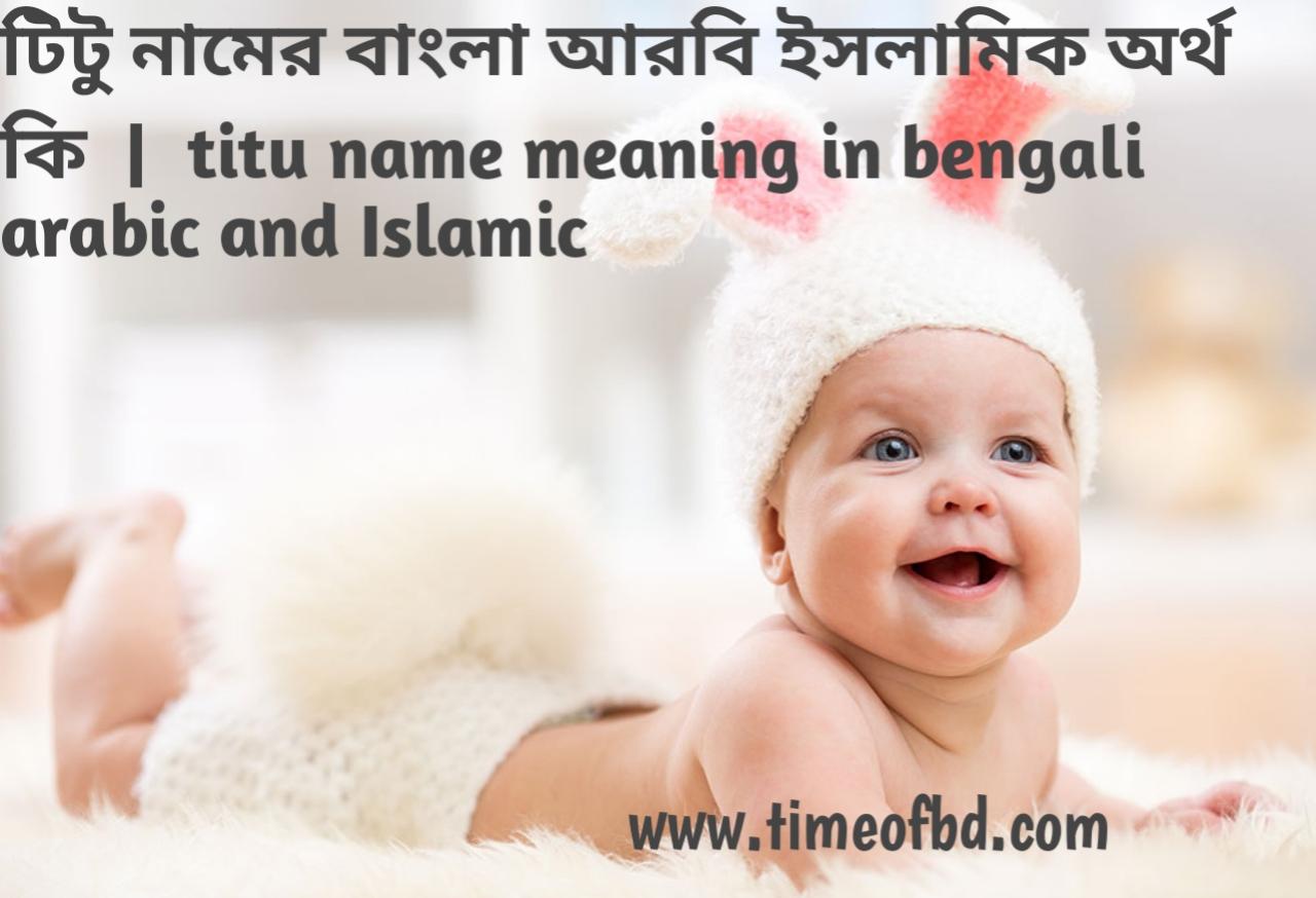 টিটু নামের অর্থ কী, টিটু নামের বাংলা অর্থ কি, টিটু নামের ইসলামিক অর্থ কি, titu name meaning in bengali