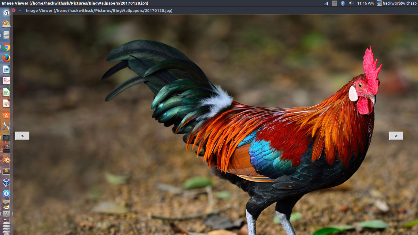 How To Create Image Viewer Using Python, Tkinter And PIL/pillow