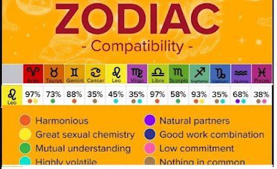 LEO COMPATIBILITY WITH OTHER SUN SIGNS