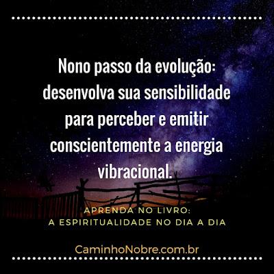 Nono passo da evolução: desenvolva sua sensibilidade para perceber e emitir conscientemente a energia vibracional. Livro A Espiritualidade no Dia a Dia