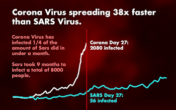 Coronavirus  : The death toll rises to 56, and Wuhan may have 1,000 more cases.