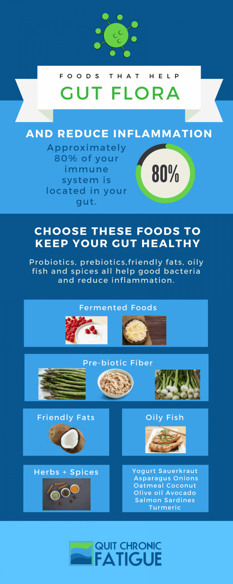 Foods That Help Gut Flora #infographic