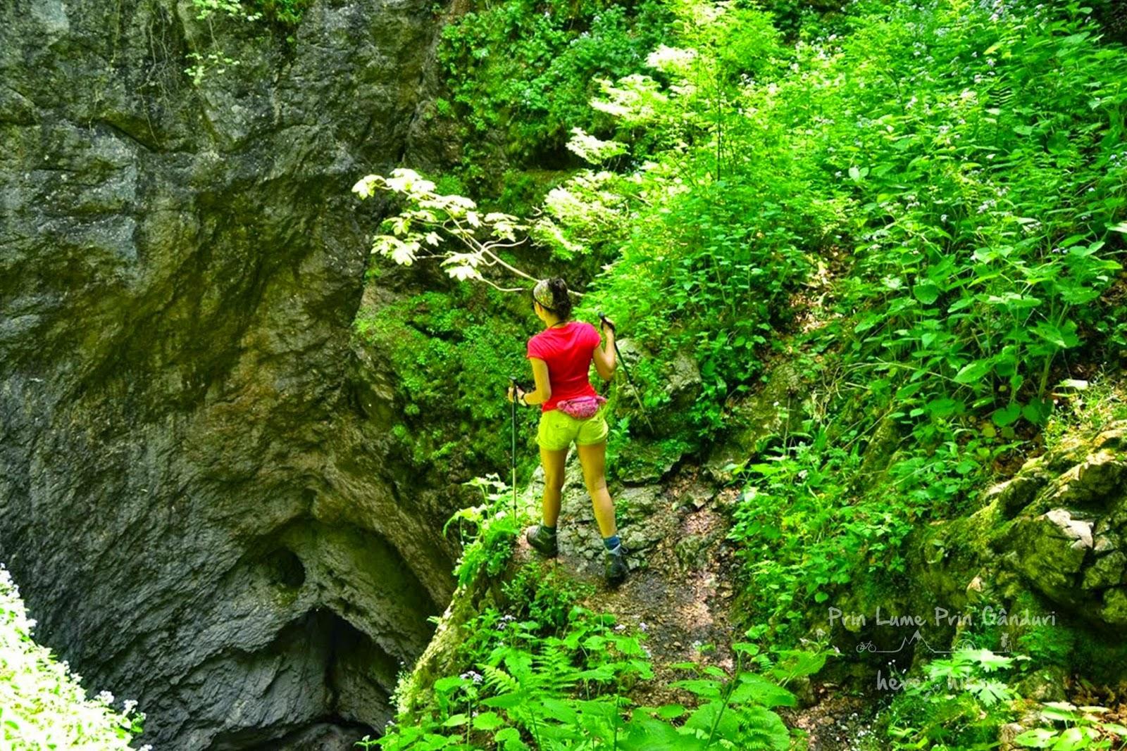 visit_apuseni_natural_park_avenul_negru