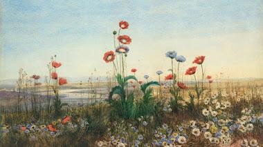 Paisajes con flores silvestres de Andrew Nicholl