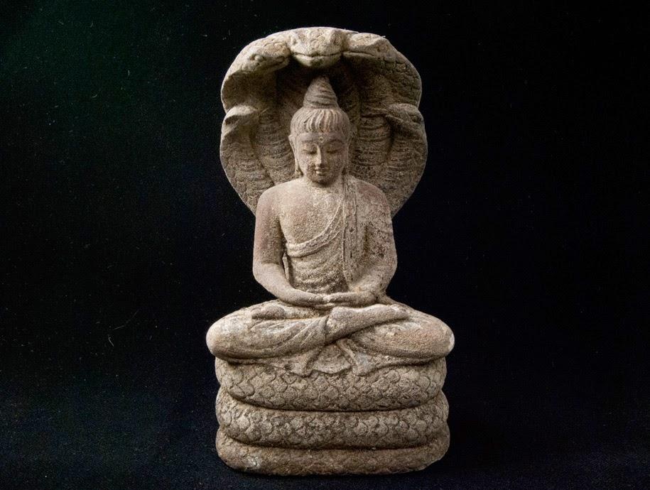 La serpiente - Udana, la palabra de Buda