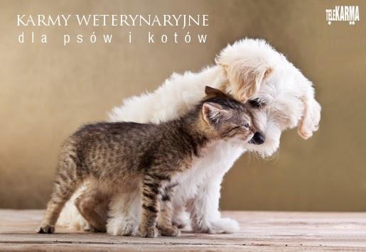 Nowe karmy weterynaryjne dla psów i kotów