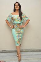 Nikki Galrani in Cute Dress Dress At Marakathamani Success Meet ~  Exclusive 007.JPG