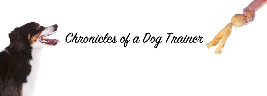 Chronicles of a Dog Trainer