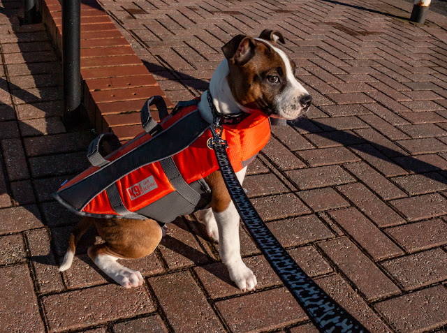 Archive photo of Ruby in her first lifejacket at three months old