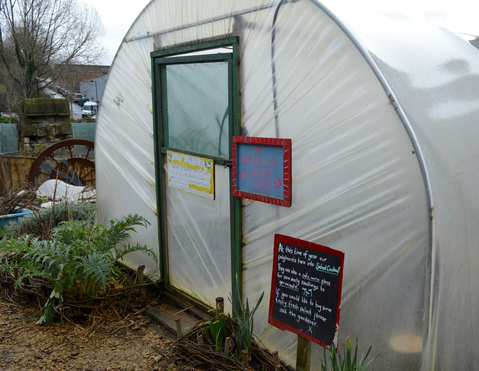 Ouseburn Farm Newcastle | A FREE Place to Take the Kids - vegetables growing
