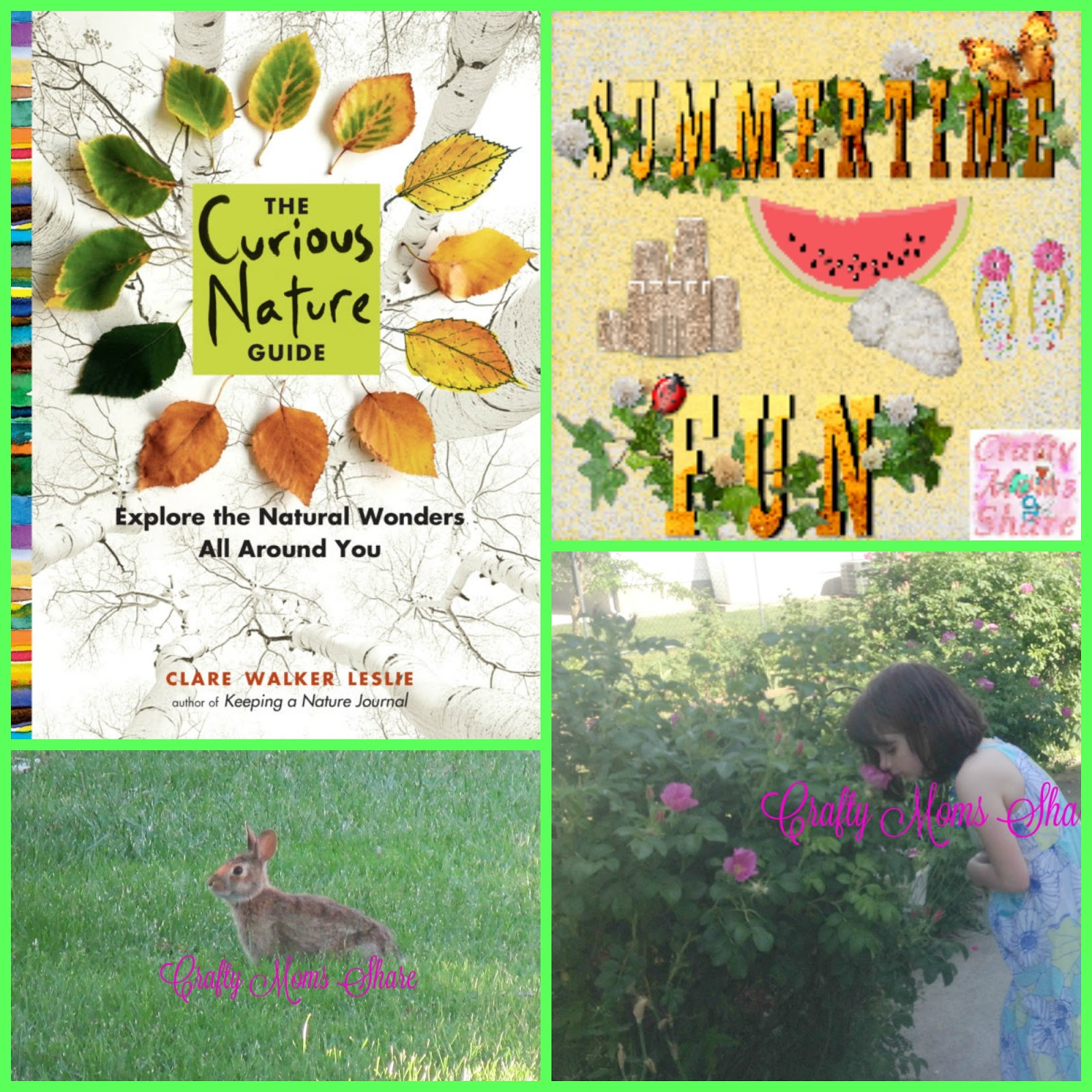 crafty moms share the curious nature guide summertime fun review