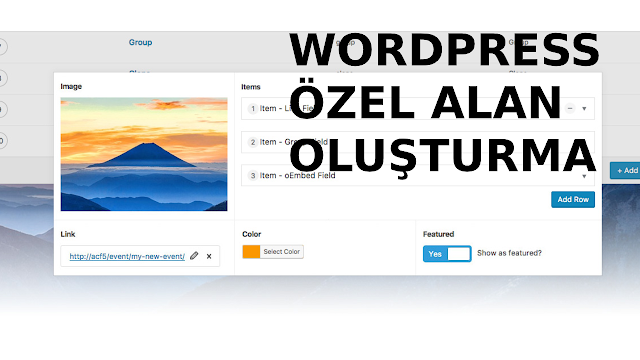 wordpress advanced custom fields kullanımı