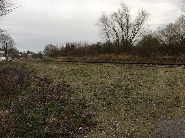 Hauptsächlich grün braune Wiese mit braunem Laub. Mittig geht das rostige Gleis durchs Bild um dann zwischen Knicks zu verschwinden. Hinter dem Gleis Knicks und einige dürre Bäume