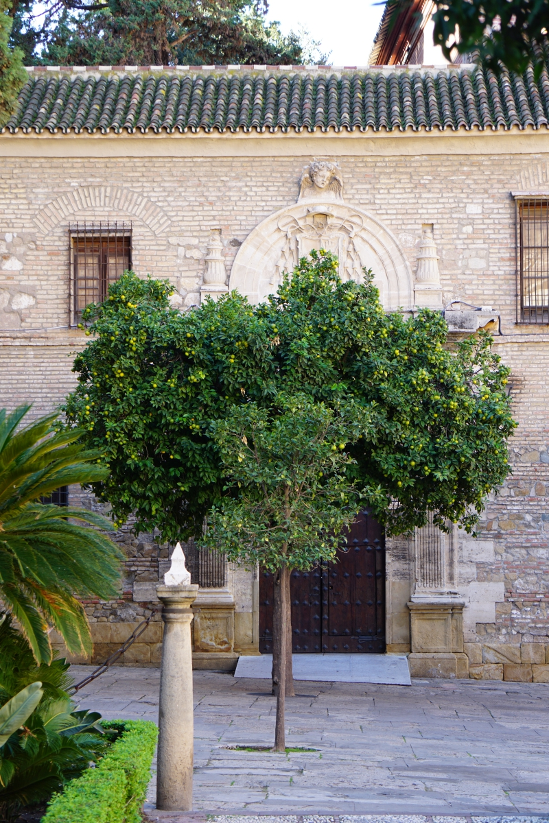 Malaga, matkailu, aurinkorannikko
