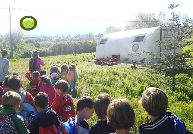 visitar granja amb nens - visites a granges