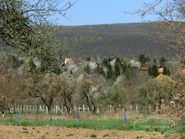 Венгрия, хюгге, рустик, блоги о жизни за границей, ваби саби, о жизни в венгрии