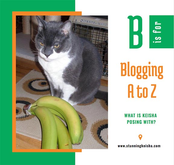 Blogging From A to Z: B is for …