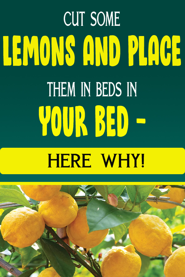 CUT SOME LEMONS AND PLACE THEM IN BEDS IN YOUR BED - HERE WHY!