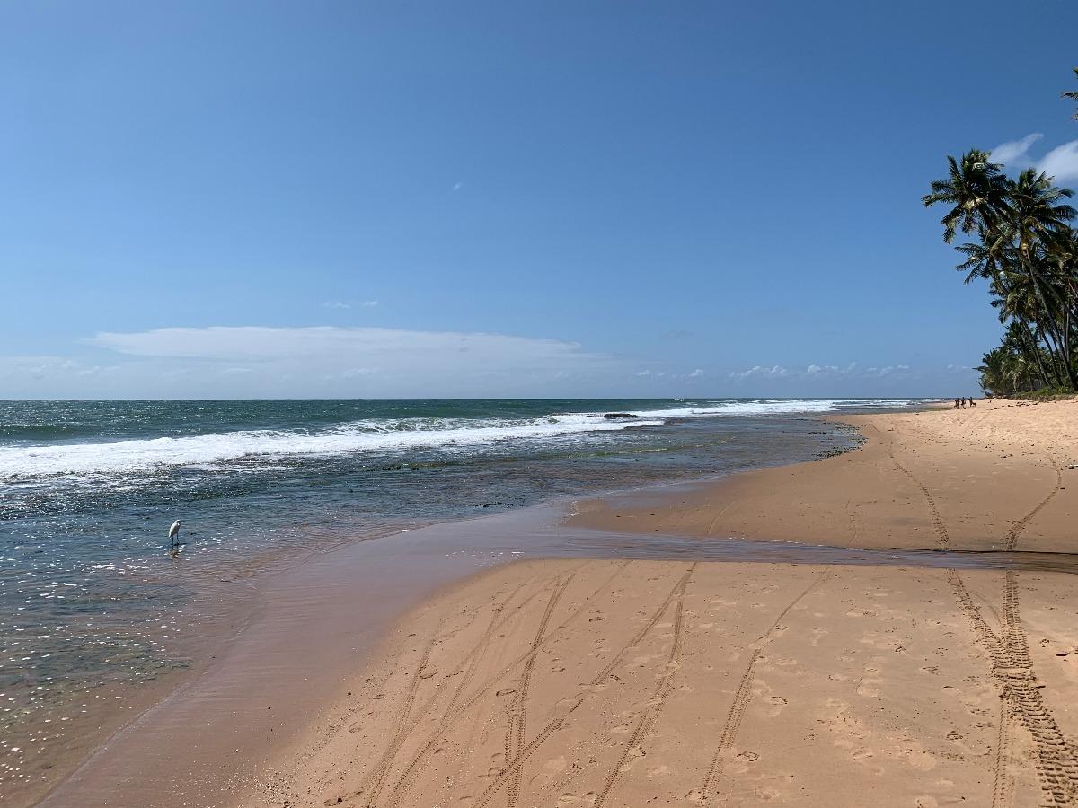 praia bombaça barra grande bahia
