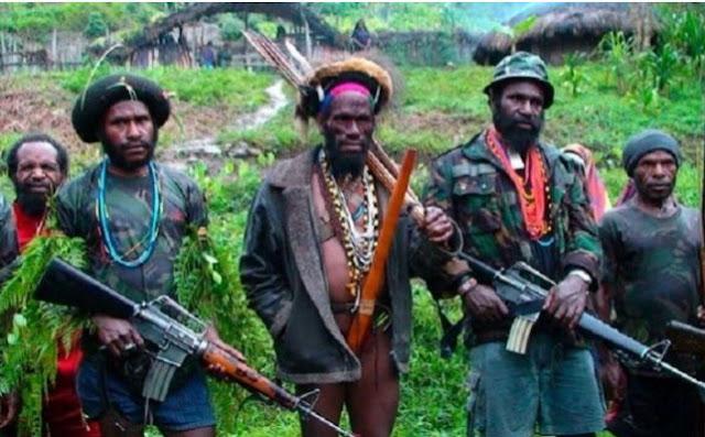 Banyak Prajurit TNI Tewas, Ketua MPR Minta KKSB Papua Diberantas