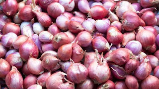 6 Benefits of Onion For Stomach and Digestive System