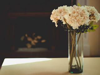 ciri-ciri-bunga-potong-segar.jpg
