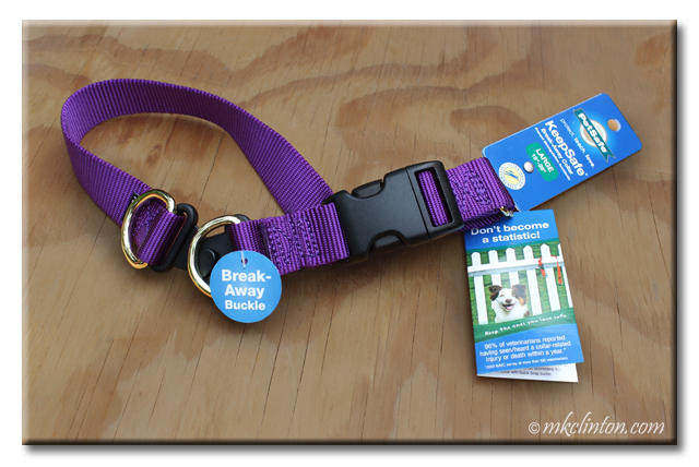 Purple PetSafe KeepSafe Break-Away collar
