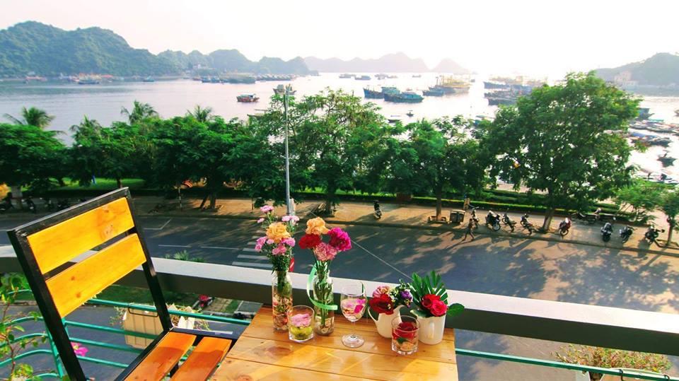 Top homestay ở đảo Cát Bà, Hải Phòng đẹp không nên bỏ qua khi du lịch