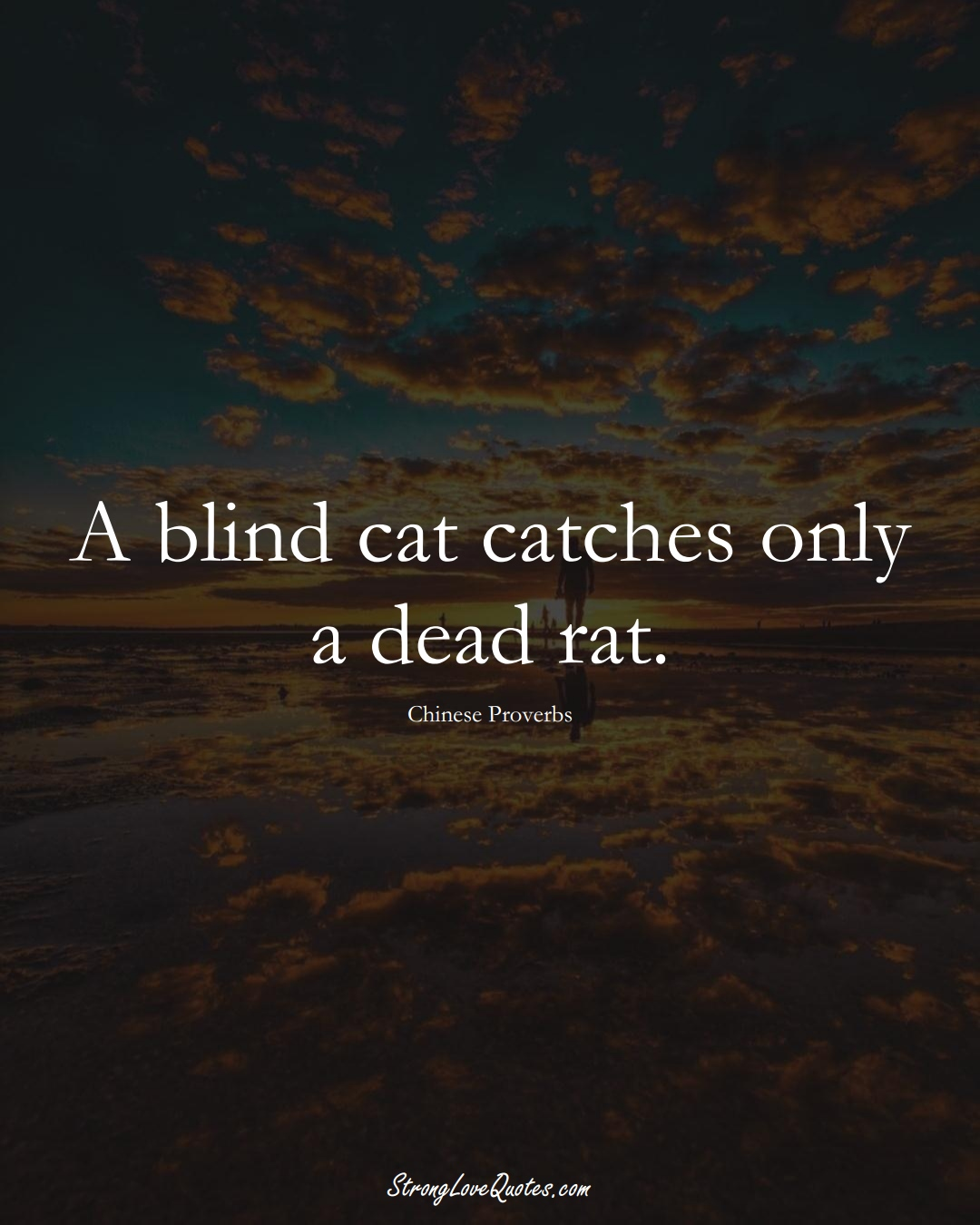 A blind cat catches only a dead rat. (Chinese Sayings);  #AsianSayings