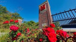 50 University of Nebraska-Lincoln CASNR Undergraduate Scholarships in USA, 2019-2020