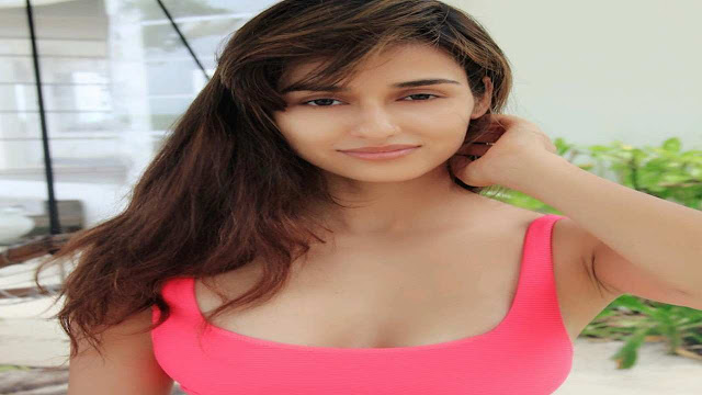 Disha Patni WiKi - Biography, Age, Boyfriend, Caste, Net Worth, Relationships