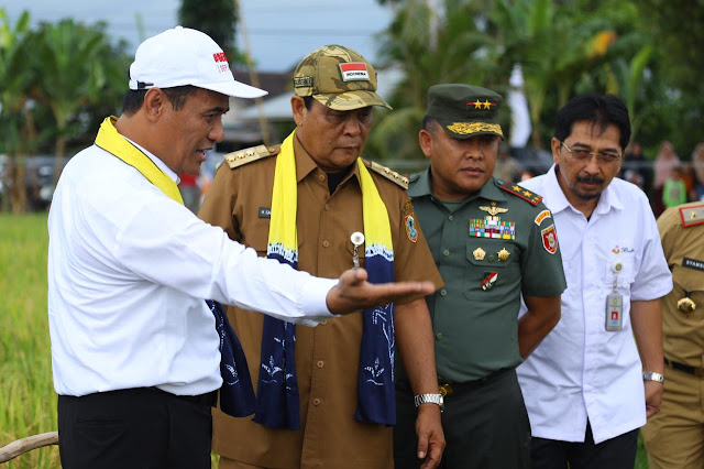 Kalsel  Masa Depan  Pertanian Indonesia