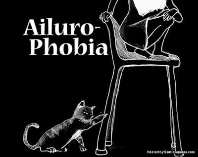 Ailurophobia Fobia Terhadap Kucing