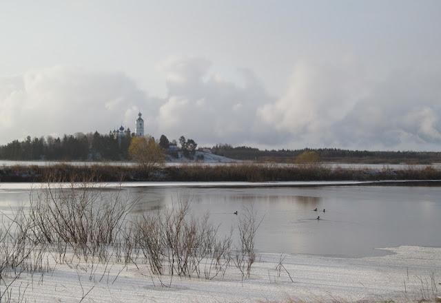 Утки на осенней реке
