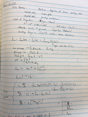 A photo of my notes from my NIH Research Notebook 1, March 30, 1989, taken during a talk by Arthur Sherman.