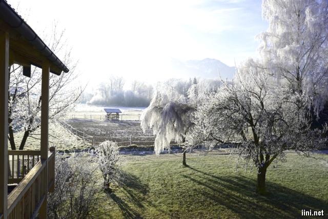 ảnh ngôi nhà và chút nắng mùa đông