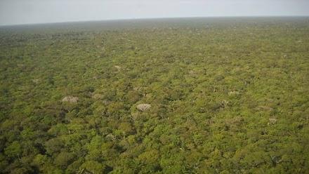Μελέτη της NASA αποκαλύπτει και προειδοποιεί: Ο άνθρωπος «στεγνώνει» τον Αμαζόνιο