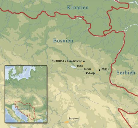 Modern All Other Era Wargaming Danish Leopards In Bosnia